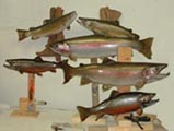 wholesale fish taxidermy